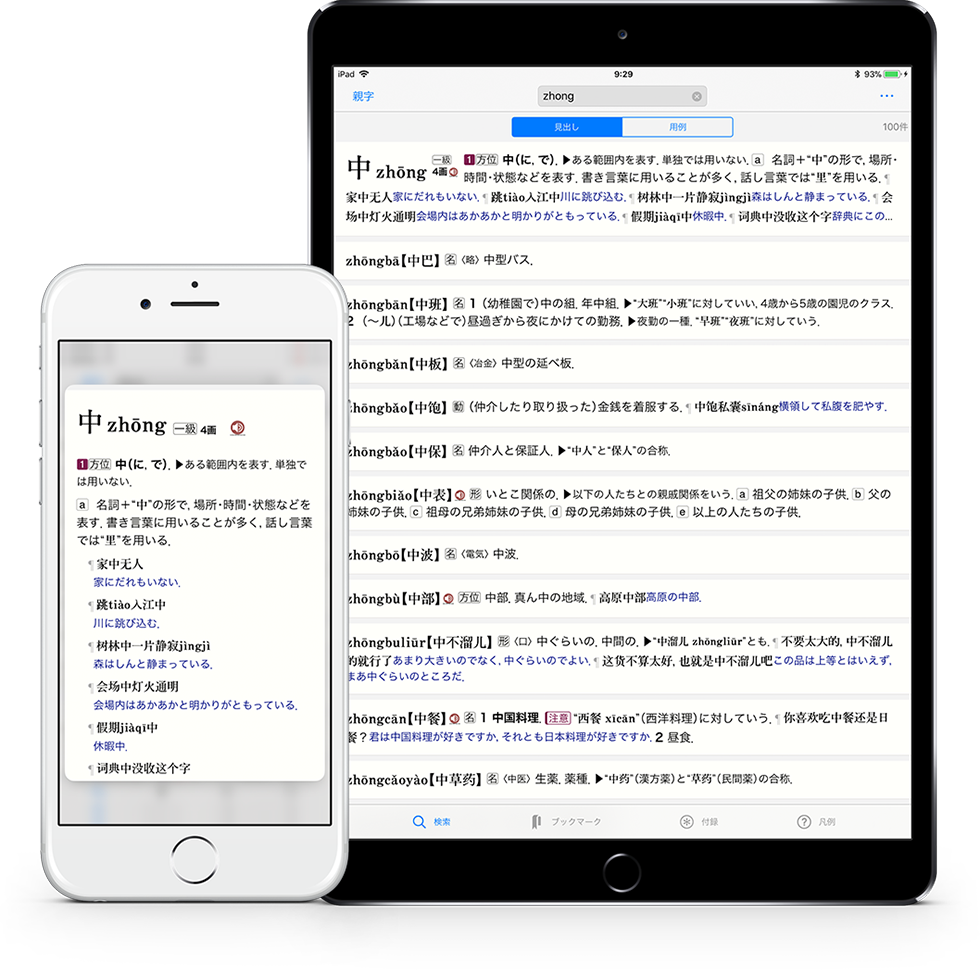 中日日中辞典
